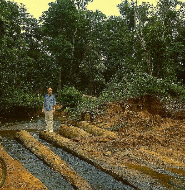 1982 gerard a cacao