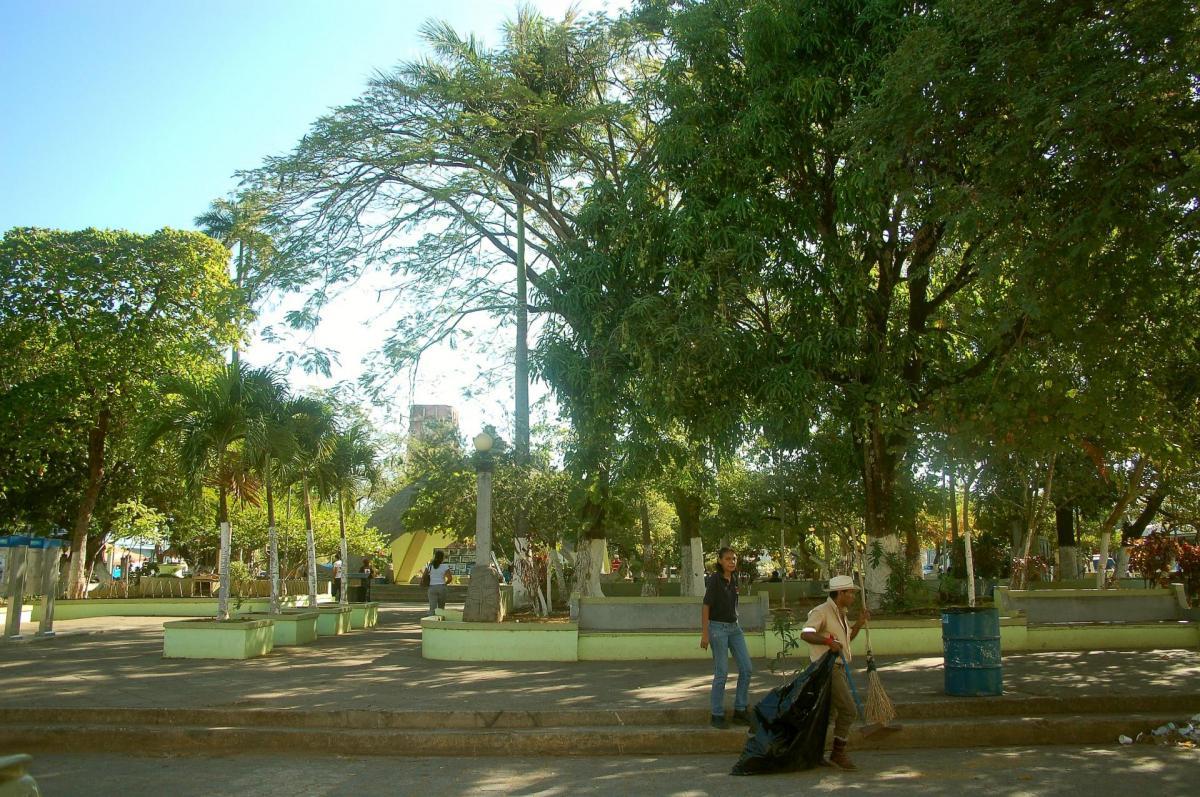 5 le balayeur du parc