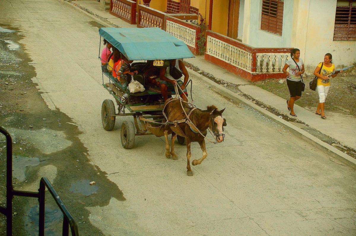 Le taxi cheval